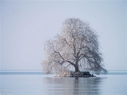Villeneuve, on the shore of the Geneva Lake