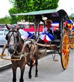 Horse-drawn Filipino Calesa Driven By A Cochero