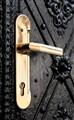 Prague Door Knob