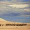 Mongolia_Gobi_camels