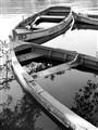 Sunken Boats (bw)