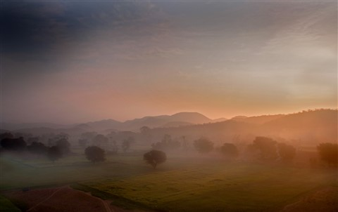 Jaipur Farmland Dawn 1600