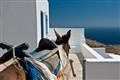 Village of Kastro, Island of Sifnos - Aegean Sea (Greece)