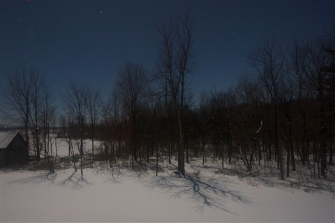 The Moon-Shadows of January