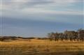 Autumn Prairie Dusk