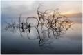 Spring Valley Lake