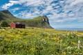 Myrland in Norway's Lofoten Islands