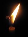 Crane candle