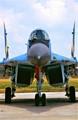 Ukranian MIG-29