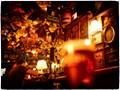 Inside Bockshorn [Vienna's Oldest Irish Pub]