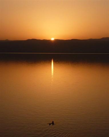 Dead Sea Serenity