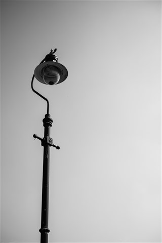Lonely Lamp