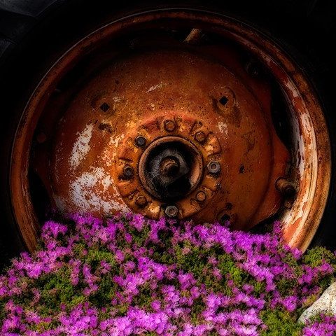 Rusty-Wheel-DP