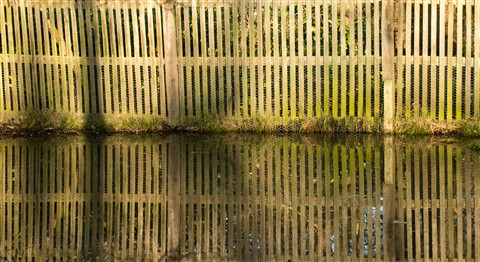 Fence reflected in water, Bushy Park, London