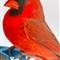 Birds3 031-Edit