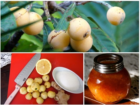 Medlar confiture (jelly)