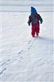 Lonesome skier