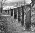 Art installation, stone markers, Magnuson Park, Seattle