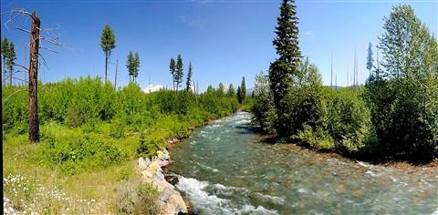 Bowman Creek