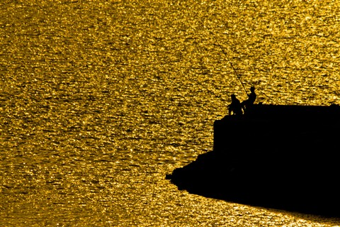 FISHING IN THE SEA OF GOLD LOW