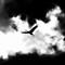 cranes_pheasant_branch_bw