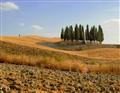 Toscane (241a)