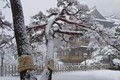 Fujiya Hotel in the snow (Hakone, Japan)
