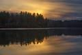 waldon pond