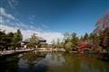 Dodai-Ji Temple - Autumn - Nara
