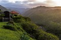 Maui Valley Paradise
