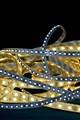 LED Ropes