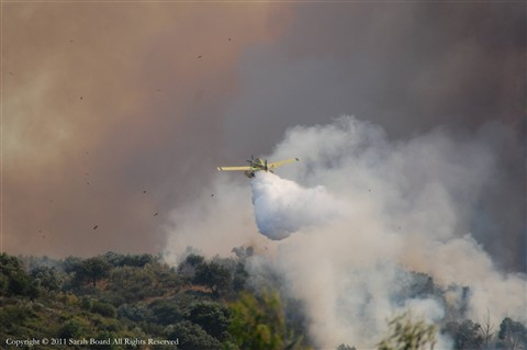 Wildfire Central Portugal