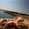 Mangrove Bay resort_0007