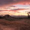 Sonoma_Barn_at_sunset-20