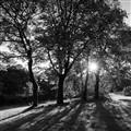 Edgeside Park