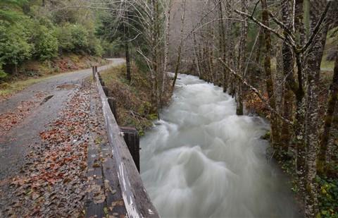 minnow_creek_bridge