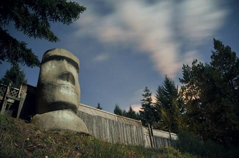 maoi head