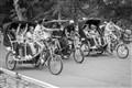 Pedicab race Central Park NY