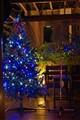 Blue Christmas Tree Lights 2009