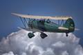 Green WACO Biplane