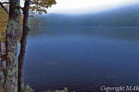 Lake better