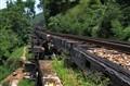 Railway Line Trekking