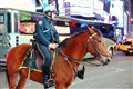Mounted Police Officer, Times Square, NYC