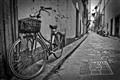 Bicycle in Florence