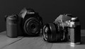 IMG_6025- Two Canons- B&W- Ver 1