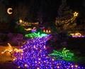BellevueD'lights, WA, USA