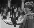 Holding Pigeons