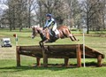 Horse Competing X-Country