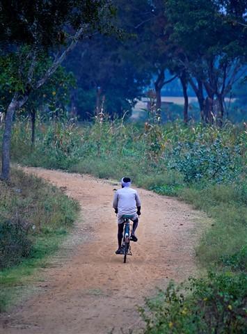 Lone biker 1 2
