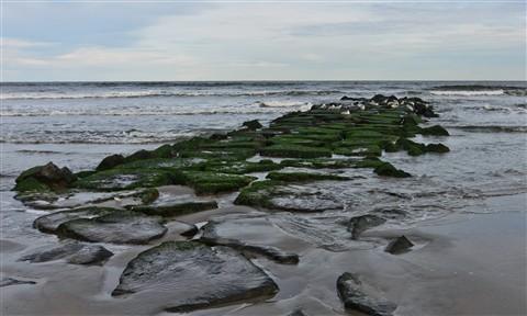 Ocean rocks-3046